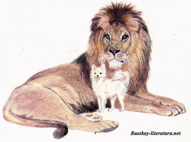 Малюнки «Лев і собачка» олівцем (19 фото) | #ТЕГ